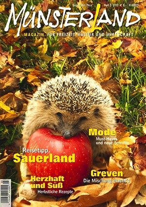 MÜNSTERLAND Magazin 3/2013