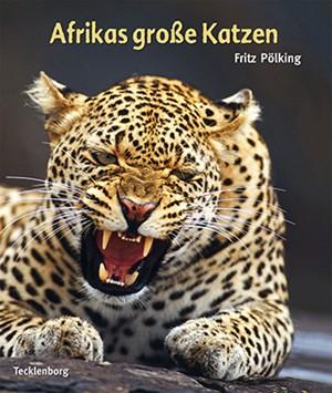 Afrikas große Katzen
