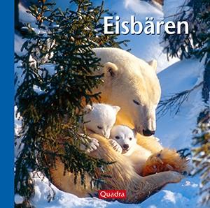 Eisbären – Edition Quadra