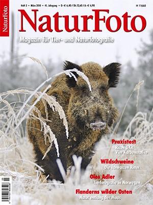 NaturFoto 3/2010