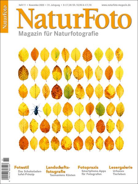 NaturFoto 11/2020