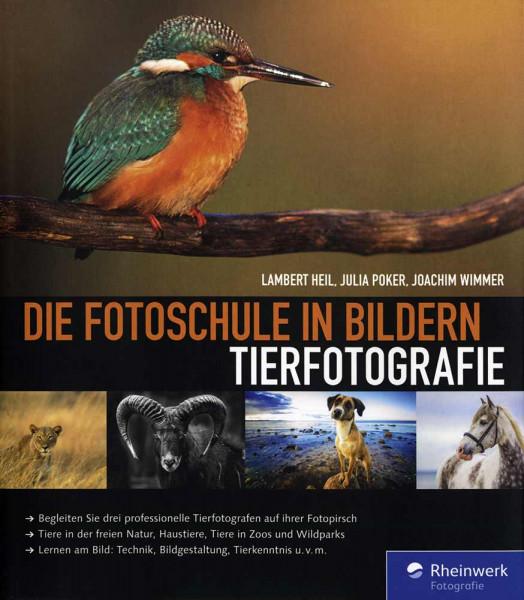 Die Fotoschule in Bildern – Tierfotografie