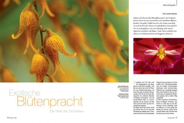 NaturFoto 12/2007