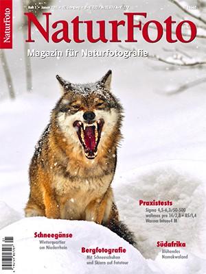 NaturFoto 1/2011