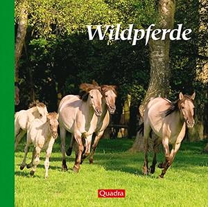 Wildpferde – Edition Quadra
