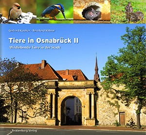 Tiere in Osnabrück 2